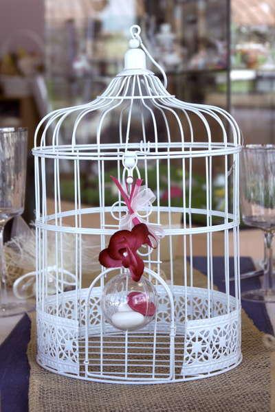 Cage à Oiseaux : Produits vitrine